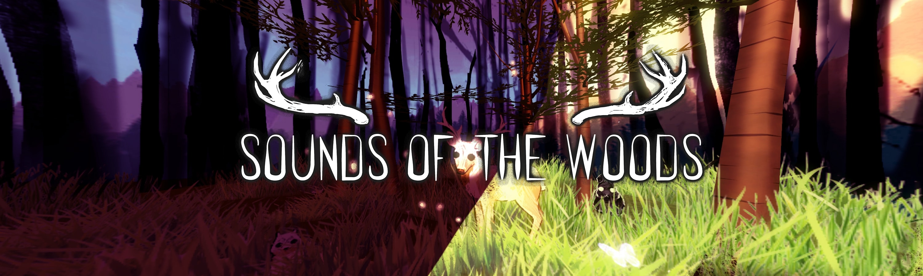 Sounds of the Woods | Kyle Qian